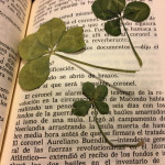 pressed clovers