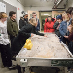 Professor Swanson describes what is happening on the Geology Department's Stream Table to her class.