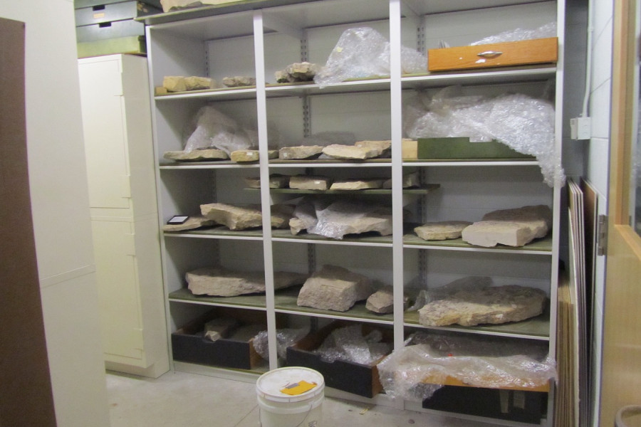 The Geology Department's rock collection is stored in the basement of the Sanger Center for the Sciences.