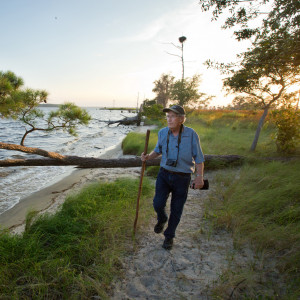 Stan Riggs, a coastal and marine geologist who has been doing research on modern coastal systems since 1964, surveys the coastal bluffs, marshes, and swamp forests at Goose Creek State Park in Washington, NC, where climate change, rising seas, and shoreline erosion have taken a dramatic toll in the past two decades.
